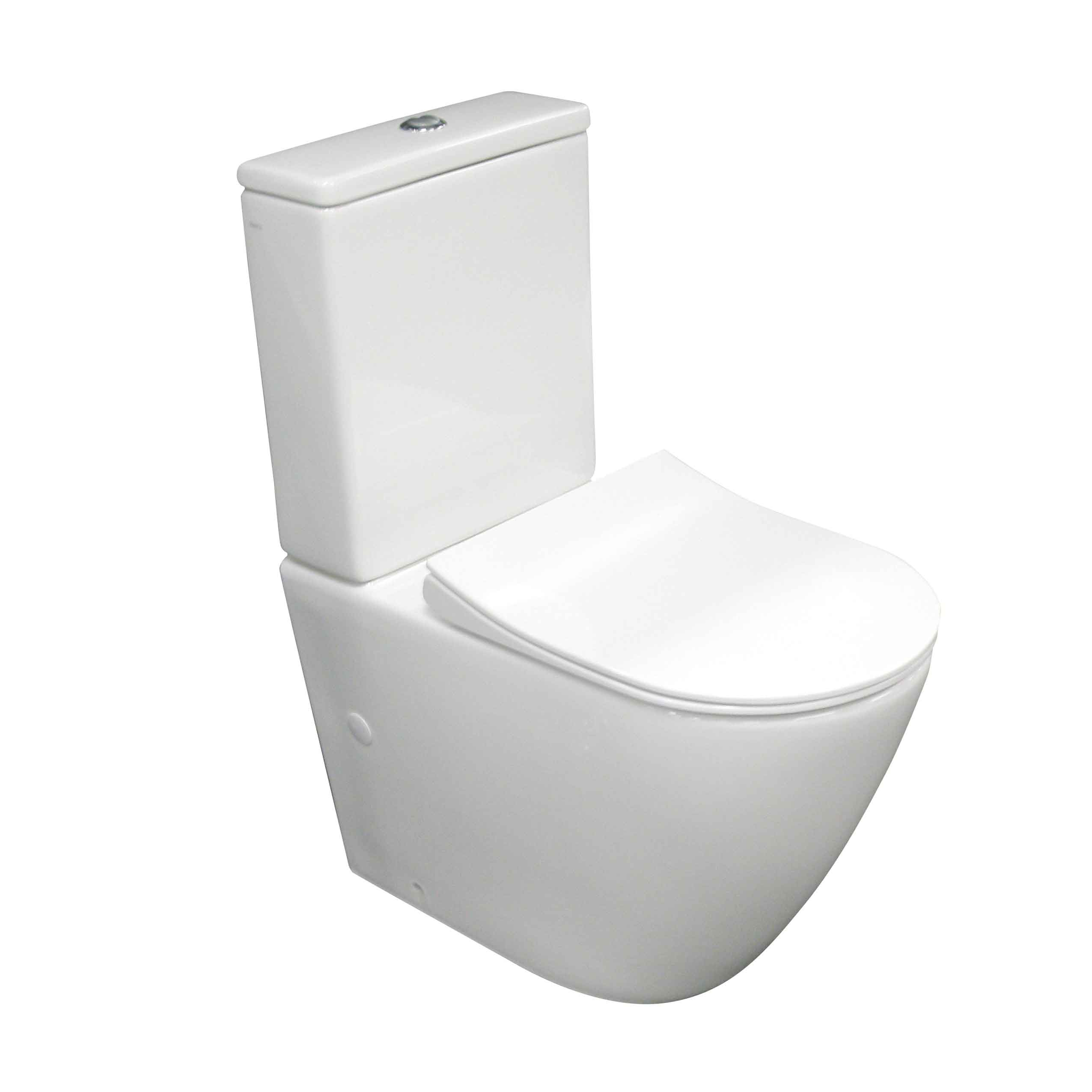 Ellisse Ambulant Wall Faced Suite - Rimless - PARISI Bathware and ...